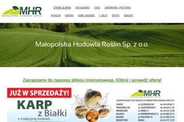 Studio MHR mgr Magdalena Hassek-Rogowska - Stylista Bydgoszcz
