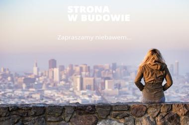 Nawa Instalatorstwo Gazowo-Elektryczne Henryk Kurkiewicz - Partner serwisowy Amica - Naprawa pralek Warszawa