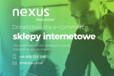 Nexus Interactive S.C. - Wykonanie Strony Internetowej Dachowa