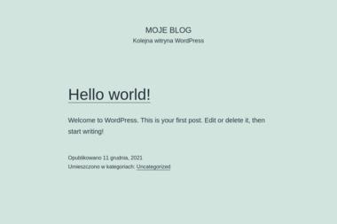 Agent Ubezpieczeniowy Urszula Lewandowska - Ubezpieczenie firmy Płock