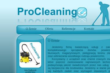 ProCleaning Artur Fijałkowski. Pranie tapicerki samochodowej, pranie wykładziny - Odśnieżanie dróg i placów Radzymin