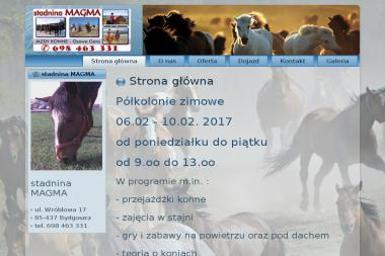 Magma Magdalena Niemczyńska - Nauka pływania Bydgoszcz
