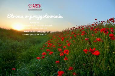 Roman Szarek Szarek Wydawnictwo Reklama - Agencja Marketingowa Słupsk