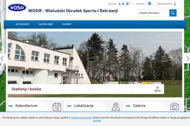 Wieluński Ośrodek Sportu i Rekreacji - Joga Wieluń