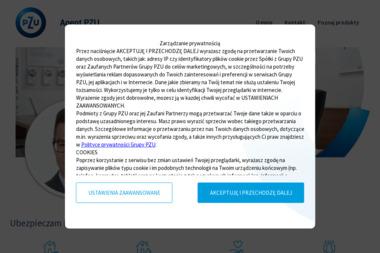 Michał Kozak Agent Ubezpieczeniowy - Ubezpieczenie samochodu Działoszyn