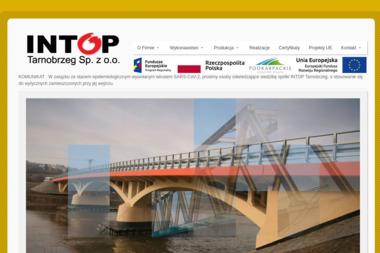 Intop Tarnobrzeg Sp. z o.o. - Podłoga z Żywicy Tarnobrzeg