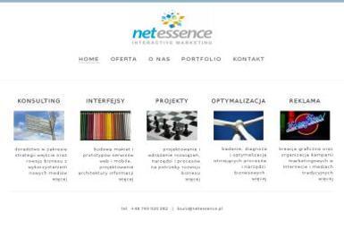 Net Essence. Agencja marketingu interaktywnego - Analiza Marketingowa Pruszcz Gdański