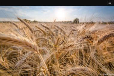 Agencja Ubezpieczeniowa MOJE UBEZPIECZENIA Urszula Pietrzak - Firma audytorska Jędrzychowice