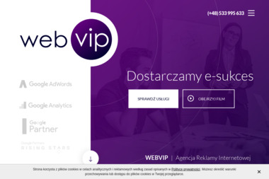 webVIP. Agencja reklamy internetowej, linki sponsorowane - Linki sponsorowane, banery Poznań