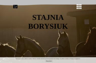 Stajnia Borysiuk - Jazdy Konne dla Dzieci Radzyń Podlaski