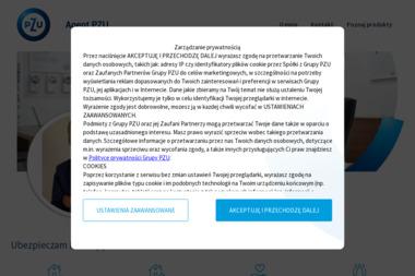 MAGIS Finanse i ubezpieczenia Adrian Marciniak - Usługi Września