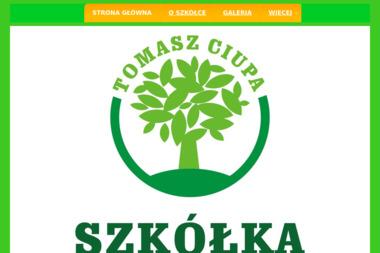 Tomasz Ciupa Centrum Ogrodnicze Flora - Giełda rolnicza Końskowola