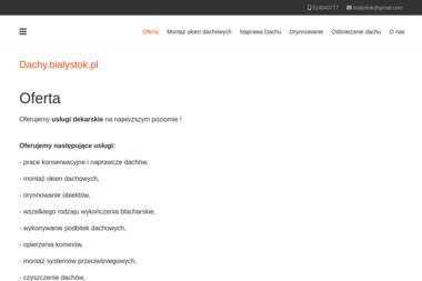 Dachy.bialystok.pl Michał Adamowicz - Odśnieżanie dachów Białystok