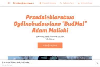 BudMal - Elewacje Lasów