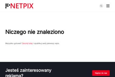 NETPIX - Strony internetowe Rzeszów - Logo Firmy Rzeszów