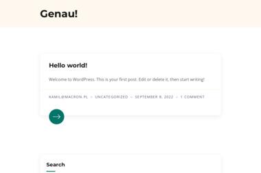 GENAU Daniel Dykowski - Tynk Natryskowy Toruń