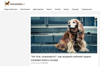 Biuro Usług Rachunkowych Mirosława Renata Pajewska - Usługi finansowe Zgorzelec