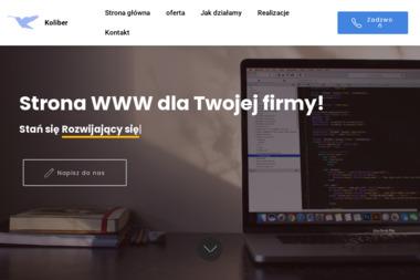 KOLIBER - Marketing Internetowy Płońsk