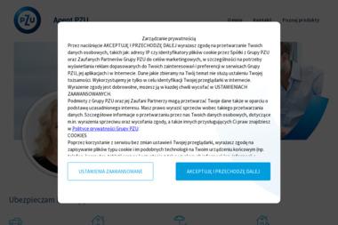 Agent Elżbieta Mikołajczyk PZU Ubezpieczenia - Ubezpieczenie firmy Leszno