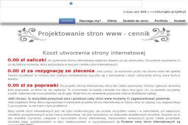 Agencja Internektywna TS-PROJEKT - Strony internetowe Rymanów