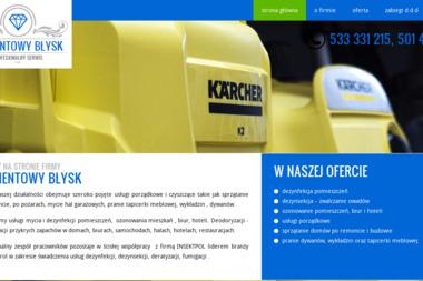 Diamentowy Błysk - Mycie Okien Dachowych Olsztyn