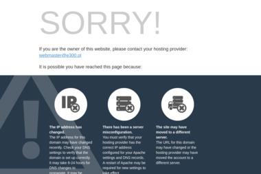 e300 - Reklama Internetowa Gdynia