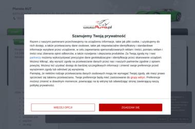 Planeta AUT - Sprzedawcy samochodów dostawczych Pruszcz Gdański