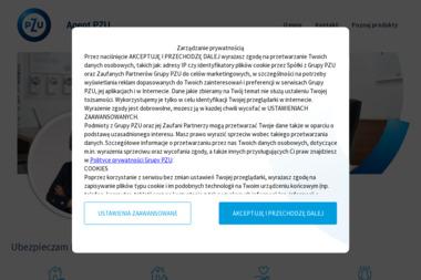 PZU Ubezpieczenia Płock - Agent Małgorzata Rutkowska - Ubezpieczenie samochodu Płock