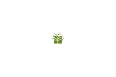 Ogrody Kruszewski - Prace działkowe Lidzbark
