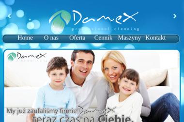 DAMEX - Sprzątanie Domu Chojniczki