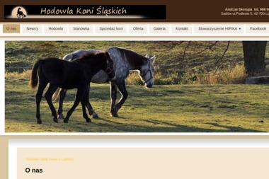 Hodowla Koni Śląskich Andrzej Skorupa - Jazdy Konne Lubliniec