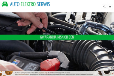 ELEKTRO - SERWIS Tadeusz Szumilas - Naprawa Klimatyzacji Samochodowej Zawiercie