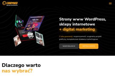 Zbigniew Chojnowski - Marketing w Internecie Mława