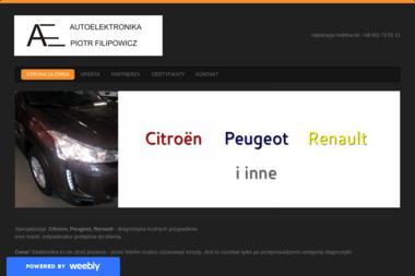 Autoelektronika - Elektryk samochodowy Rumia