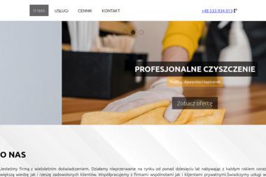 Ariz - Pranie Tapicerki Włocławek
