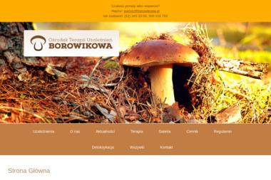 Ośrodek Terapii Uzależnień Borowikowa - Terapia Uzależnień Bydgoszcz