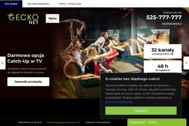 GECKONET SP. Z O.O. - Internet Nowe