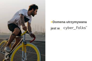 Zakład Zduński Tomasz Czapkowicz - Zdun Świebodzin