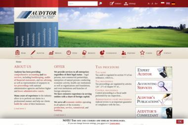 AUDYTOR - Firma konsultingowa Łódź