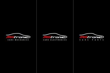 MsTronic - Elektryk samochodowy Wieluń