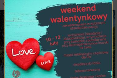 APARTHOTEL & RESTAURACJA HUBERTUS - Lokale gastronomiczne Starogard Gda艅ski