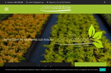 Rośliny Ozdobne - Sadzonki Wolanów