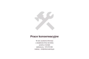Silver Catering - Catering świąteczny Łódź
