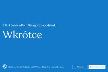 Z.U.H Service-Dom - Naprawa piekarników i kuchenek Kutno