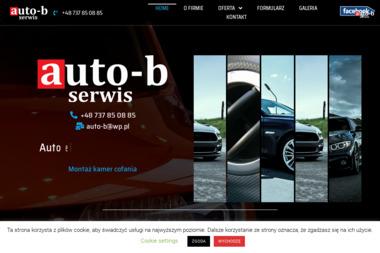 AUTO-B - Serwis Samochodowy - Elektryk samochodowy Kraków