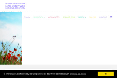 Niepubliczne Przedszkole MALI ODKRYWCY - Przedszkole Różnowo