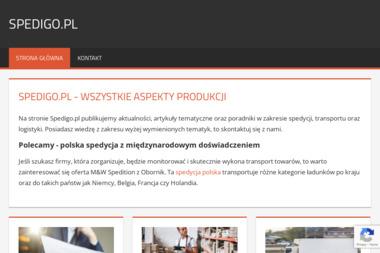 SpediGO - transport, spedycja, logistyka - Transport międzynarodowy Warszawa