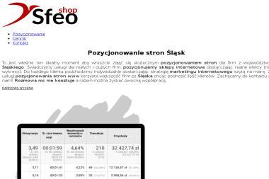 Pozycjonowanie stron śląsk - Reklama internetowa Katowice