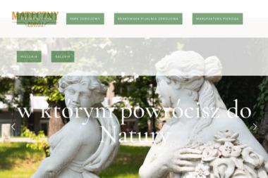 Mateczny-Zdrój - Sanatoria, uzdrowiska Kraków