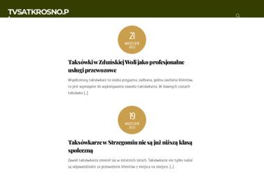 TV-SAT SERWICE - Instalacje Alarmowe Krosno